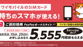 ワイモバイルのSIMを5のつく日申し込みでPayPay5,555円もらえる