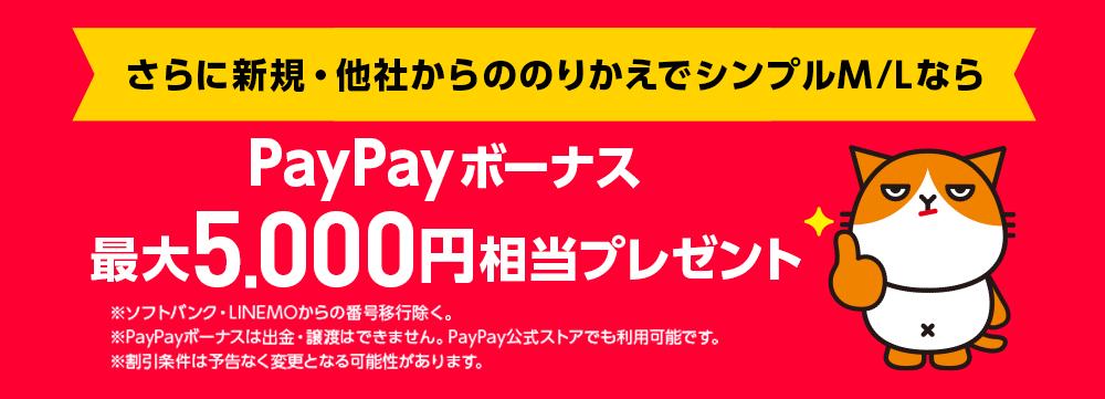 PayPayキャンペーンS